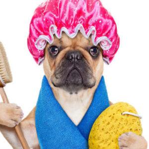 Higiene y Cuidado para mascotas