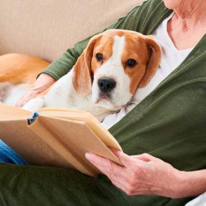 Libros para aprender sobre tu mascota