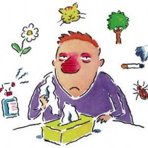 Combatir Alergias de Mascotas